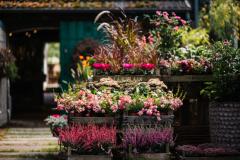 Florale-Manufaktur-42-von-230